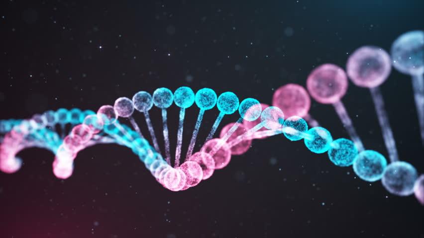 BiColor DNA chain | Shutterstock HD Video #1016088937