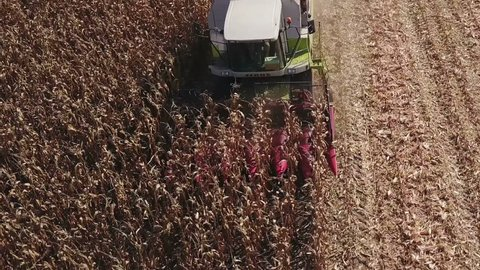 ZRENJANIN, SERBIA - SEPTEMBER 09, 2018: Aerial view of combine harvester harvesting corn crops on fields of Vojvodina. Maize harvest was good this year but Serbian farmers were unhappy with price.
