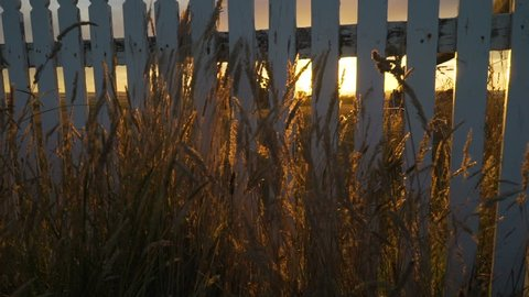 Incredible orange bright sunset over grassland in Australia in the summer, pedestal up shot