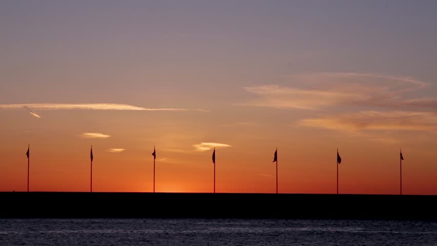 Flags waving in the wind during sunset in Helsingborg, Sweden. Bird flying by behind the flags.