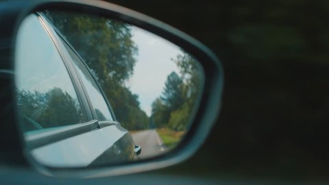 View of side mirror, driving through a Netherlands forest on a summer day