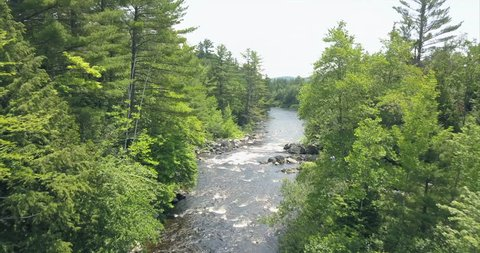 Flying through tall trees along a river at Tobey Falls near Willimantic, Maine.