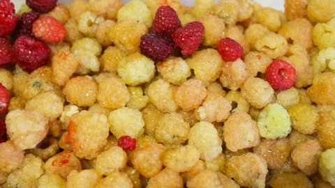 Harvest yellow fresh raspberries closeup. Indoor, real time, autumn, summer