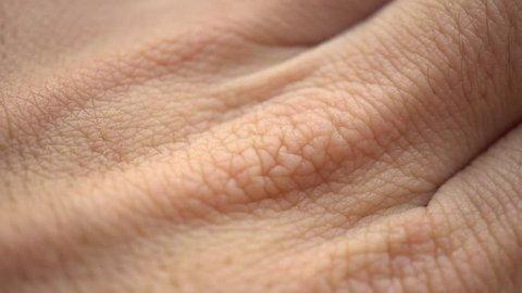 Macro Human Skin