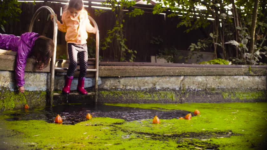 Crane shot. Two girls playing near the old pool overgrown with duckweed. A girl catching orange flower