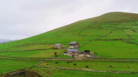 Flight over typical landscape of Ireland