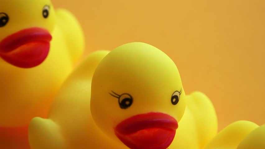 Rubber ducks in leadership concept, small yellow duckling leading forward the rest of the group, dolly slider shot