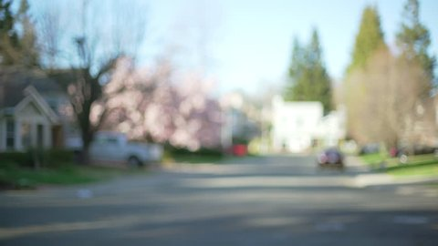 Exterior scene of a quiet neighborhood street with homes and trees. Blurred background of traditional houses with a cherry blossom tree in suburbia.