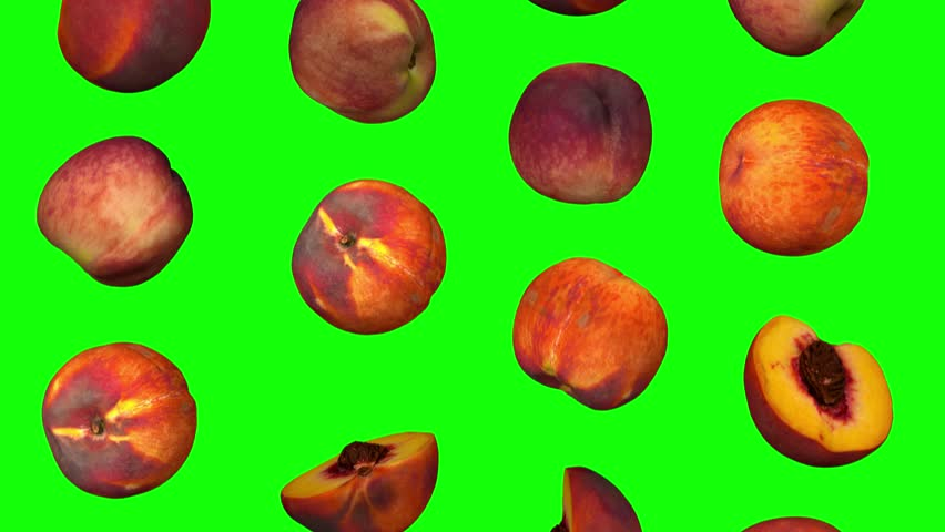 Realistic render of falling peaches on green background. The video is seamlessly looping, and the objects are 3D scanned from real peaches.  | Shutterstock HD Video #1017949267