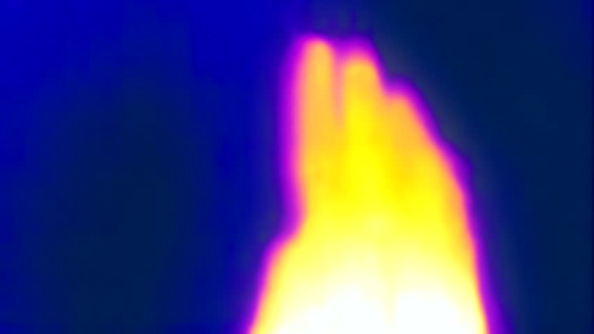 Thermal Imaging Of Hand Main | Shutterstock HD Video #1017968677