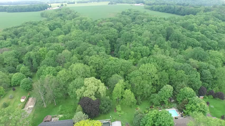 Panorama Over Forest Trees To Cottages | Shutterstock HD Video #1018162297