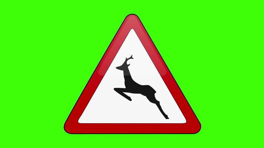 Symbol Wild Animal Crossing Green Screen   Shutterstock HD Video #1018173667