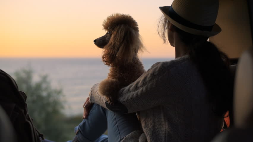 Woman traveler with dog sitting in car trunk near sea, watching sunset. | Shutterstock HD Video #1018178707