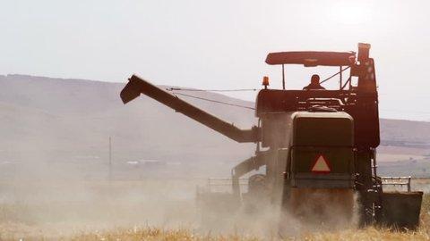 Combine harvester gathers the barley crop