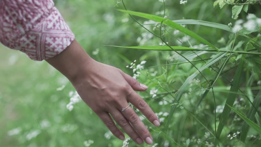 Girl hand moving over grass field with white green flowers. slow motion magical soft light. Touching nature background, close up passing hand with ring. Feeling free and happy, optimistic nature shot.