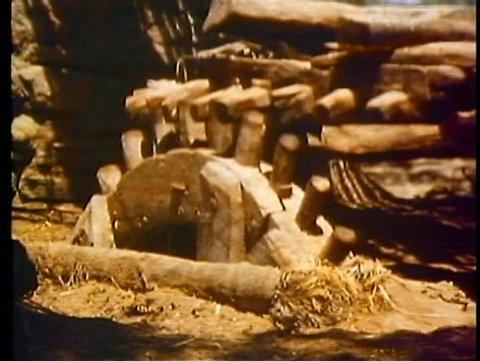 LUXOR, EGYPT, 1977, Waterwheel irrigation system near Luxor, a beast of burden
