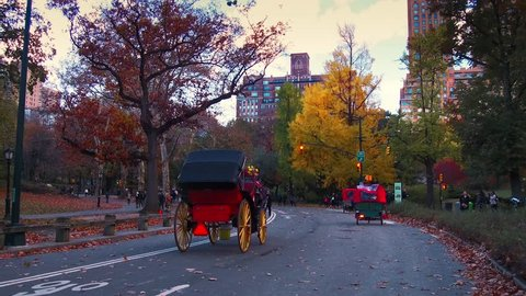 NEW YORK CITY, USA - OCT 30, 2018: Horse Carriage in Central Park in Autumn Midtown Manhattan in New York City.
