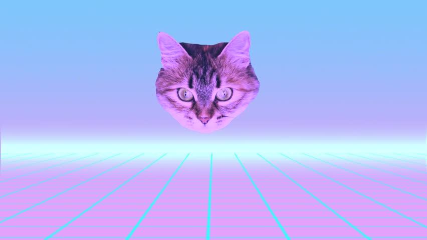 Minimal Motion design art. Cat's head shoots rainbow laser from her eyes   Shutterstock HD Video #1020256657