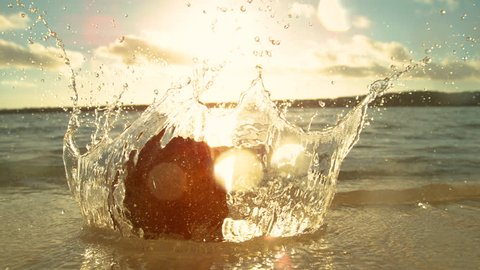 SLOW MOTION, LENS FLARE, MACRO, DOF: Golden evening sunbeams shine on the hairy coconut falling into the glassy sea in beautiful Cook Islands. Brown coconut falls onto the sandy beach and into ocean.