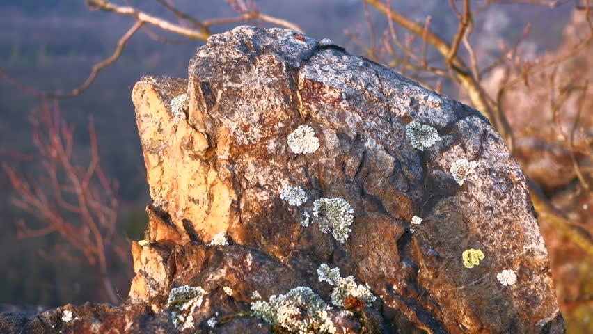 Rocks during golden hour. 4K resolution trucking shot. Shallow depth of field. | Shutterstock HD Video #1021083007