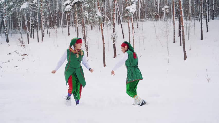 Two fabulous elves in green suits ran into the hut to warm themselves after they had frozen outside. Winter landscape. Slow motion | Shutterstock HD Video #1021498207