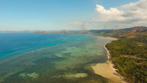 Aerial sand beach and palm trees on tropical island with turquoise sea. tropical seascape s Tropical landscape ocean, sky, sea Busuanga, Palawan, Philippines