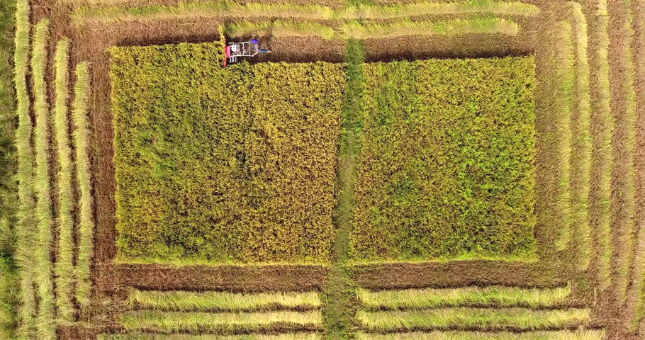 Overhead aerial view of a farmer harvesting rice crops using a machine | Shutterstock HD Video #1022841337