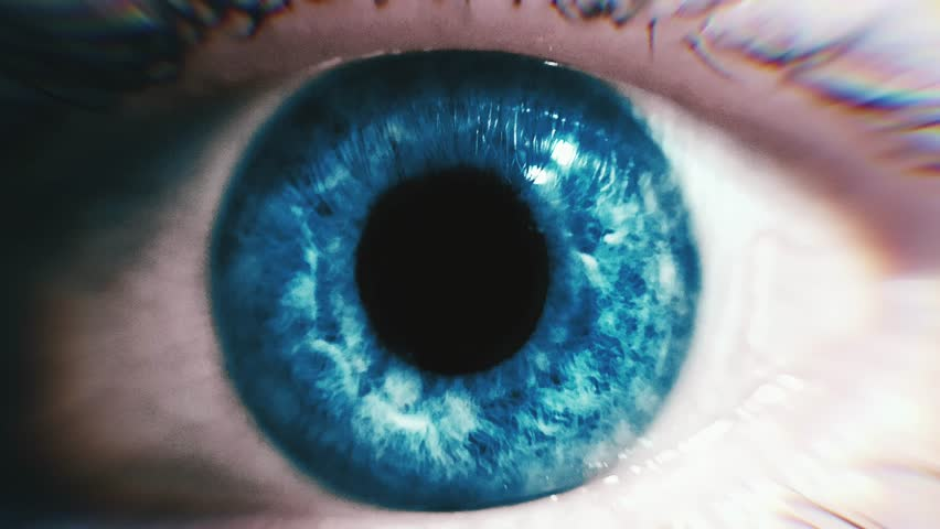Zooming in eye pupil. Closeup animation of blue eyes. #1022899687