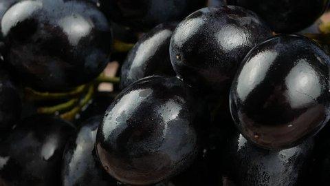 Dark blue grape on black background