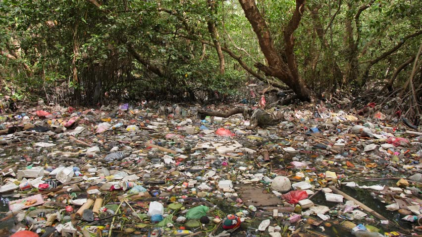 Huge Dump in Tropical Mangrove Tree Forest. Plastic Waste Rubbish Floating in Lake Water. Environmental Pollution Ecological Problem Concept. 4K. Bali, Indonesia. | Shutterstock HD Video #1023563467