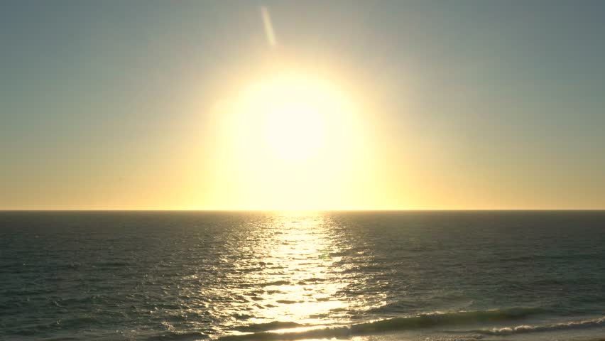 Seagull birds flying around the sunset sky over the ocean sun flare | Shutterstock HD Video #1023623227