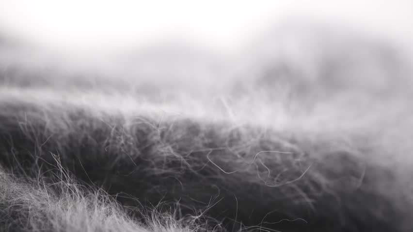 Wool background. Alpaca wool mohair clothes texture closeup. Cashmere Soft and fluffy grey merino wool macro shot. Woolen fabric. Knitted texture surface Rotated. 4K UHD video | Shutterstock HD Video #1023676447