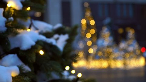 Close-up of blurry bokeh of christmas trees on golden background. Christmas and New Year holidays background