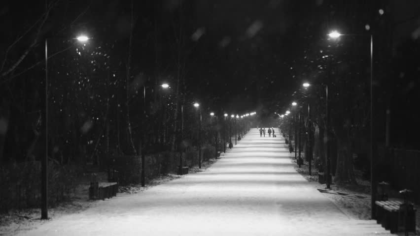 People walk with dogs in the park. The night alley is lit by lanterns. Winter. It is snowing.