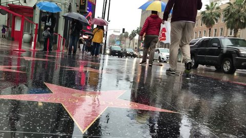 LOS ANGELES, Feb 2nd, 2019: Low angle close up of Mickey Mouse's Walk of Fame star on a rain-soaked Hollywood Boulevard during a storm, with people carrying umbrellas walking past. With ambient sound.