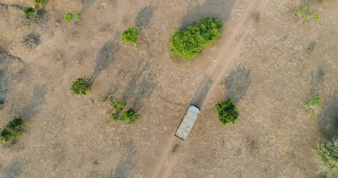 4K High aerial straight down view of a 4x4 safari vehicle driving thorugh the bushveld with beautiful large Baobab trees, Gonarezhou National Park, Zimbabwe