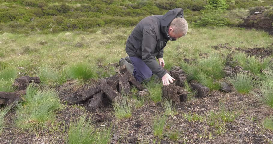 Fitting and Cutting Turf Peat with a spade in a Moss Bog in Ireland