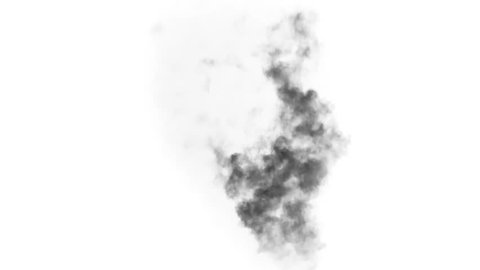 Black Smoke from a Fading Fire. Black smoke rises from a large burning object.