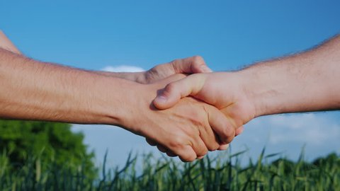 Sturdy and friendly handshake of two men's hands. Two farmers shake hands with each other