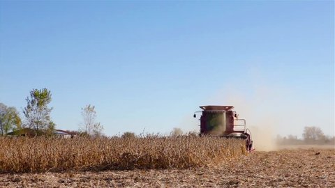 Harvest tractor in the field, Tractor rides through field in harvest season, USA