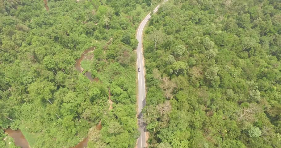 Aerial view of a SUV riding through the  woods in Malaysia
