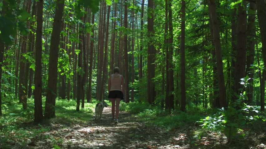 Cinematic tracking shot of a pretty girl walking with her dog through a forest #1025512277