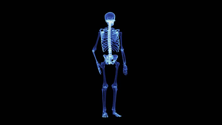The hologram of a rotating particle skeleton. 3D animation of human skeleton on a black background with a seamless loop | Shutterstock HD Video #1025780087