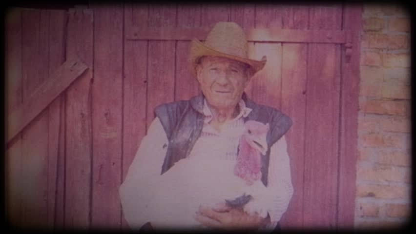 A farmer in a straw hat holds a big white turkey in his hands. Video archive. Retro. Vintage. Farm animals. Raising animals for meat. Agriculture. Organic food. Ranch. Not vegetarianism, but meat | Shutterstock HD Video #1025818967