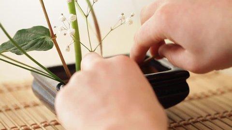 Ikebana decoration of lilies, man hands, close up, camera slide up