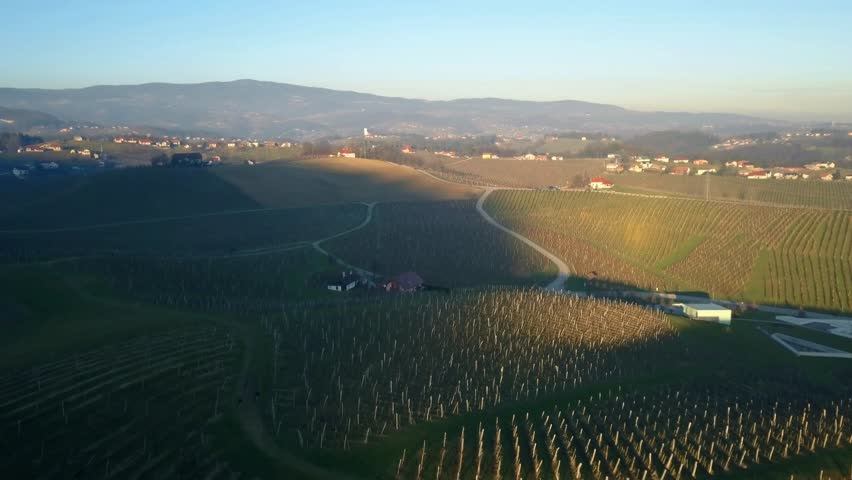Aerial: Flying over hills filled with wine plantages at beautiful autumn sunset. Filming Slovenian wine making countryside with drone. | Shutterstock HD Video #1025970947