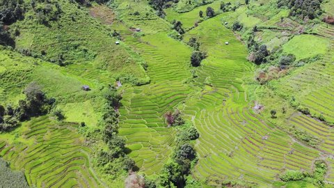 Aerial view of an amazing landscape with drone above rice terraces. 4k Resolution