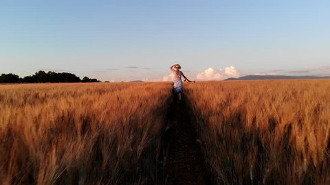 Rear view of young carefree woman in dress running in slow motion through field touching with hand wheat ears,female tourist enjoying freedom and calmness on rural nature in summer. Vacations holidays