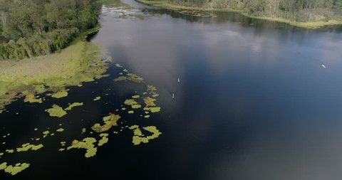 Overhead aerial drone shot of two people on stand up paddle boards, paddling on a large fresh water lake in an Australian national park