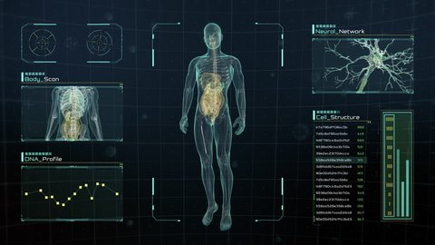 Analysis of Human Male Anatomy Scan on Futuristic Touch Screen Interface showing bones, organs, and neural network activity. Concept: In the Near Future of Medicine and Healthcare.